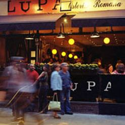 A photo of Lupa restaurant
