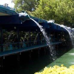 Una foto del restaurante Anthony's Fish Grotto - La Mesa