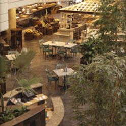 A photo of Market Cafe - Grand Hyatt Dubai restaurant