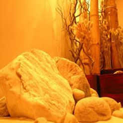 Amarit Thai Restaurantの写真