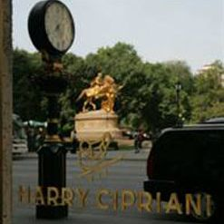 A photo of Harry Cipriani restaurant