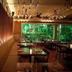 A photo of Santaella restaurant