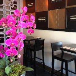 A photo of Le Soleil restaurant