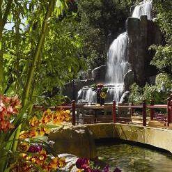 Mizumi - Wynn Las Vegasの写真