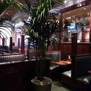 A photo of Houlihan's at the Hilton Springfield restaurant