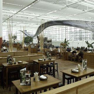Una foto del restaurante Restaurant Mangostin Airport