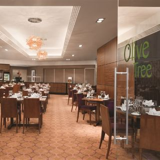 A photo of Olive Tree Restaurant restaurant