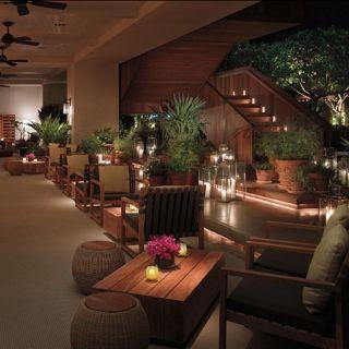 The Grove at The Modern Honoluluの写真