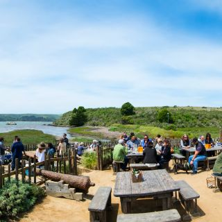 A photo of Hog Island Oyster Company - The Boat Oyster Bar restaurant