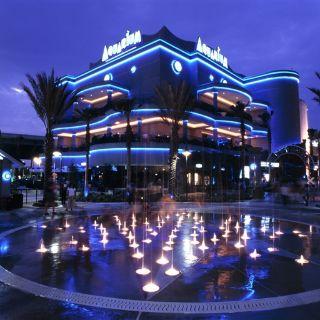 Downtown Aquariumの写真