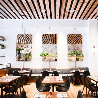 Foto del ristorante North Italia - Santa Monica