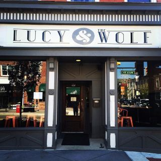Lucy & the Wolfの写真
