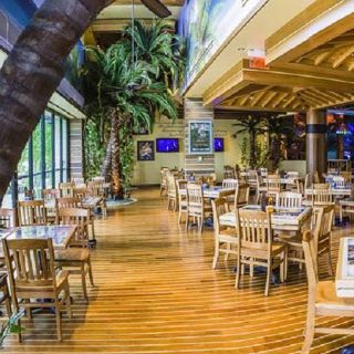 A photo of Margaritaville - Las Vegas restaurant
