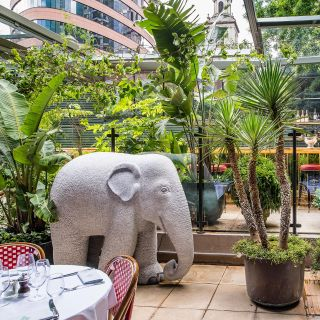 A photo of The Ivy City Garden restaurant
