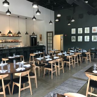 A photo of Twisted Fern restaurant