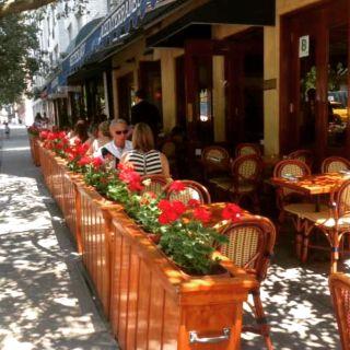 A photo of Mediterraneo restaurant