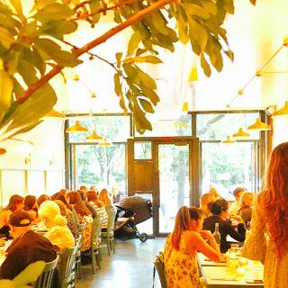 A photo of Pepe Giallo restaurant