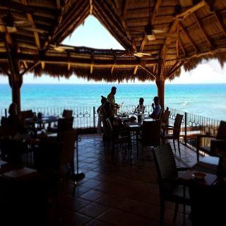 7 Seas Seafood Grille Restaurant San José Del Cabo Bcs