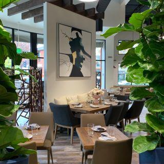 A photo of Albatross restaurant