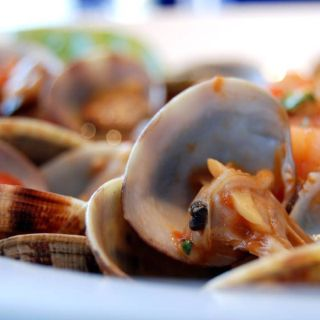 A photo of Osteria 99 Italian cuisine restaurant