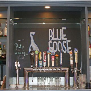Blue Gooseの写真