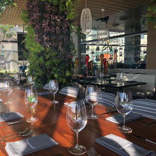 Una foto del restaurante Porfirio's Merida
