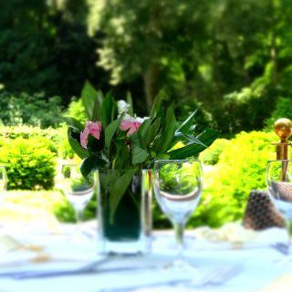 Teehaus im Englischen Gartenの写真
