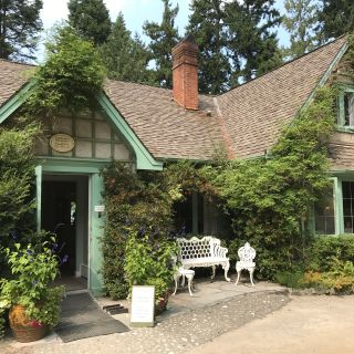 The Camellia Tea Room at Milner Gardens & Woodland