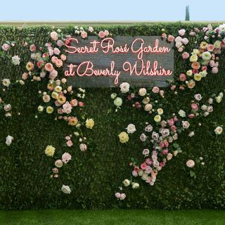 The Secret Rosé Garden at Beverly Wilshire