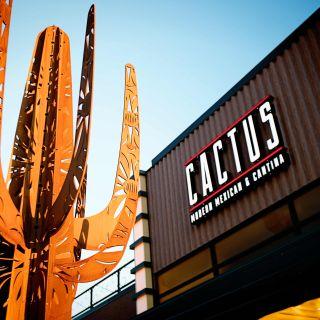 Cactus Modern Mexican & Cantina