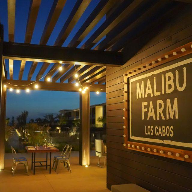 Malibu Farm Los Cabos, Cabo San Lucas, BCS