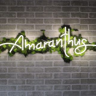 A photo of Amaranthus restaurant