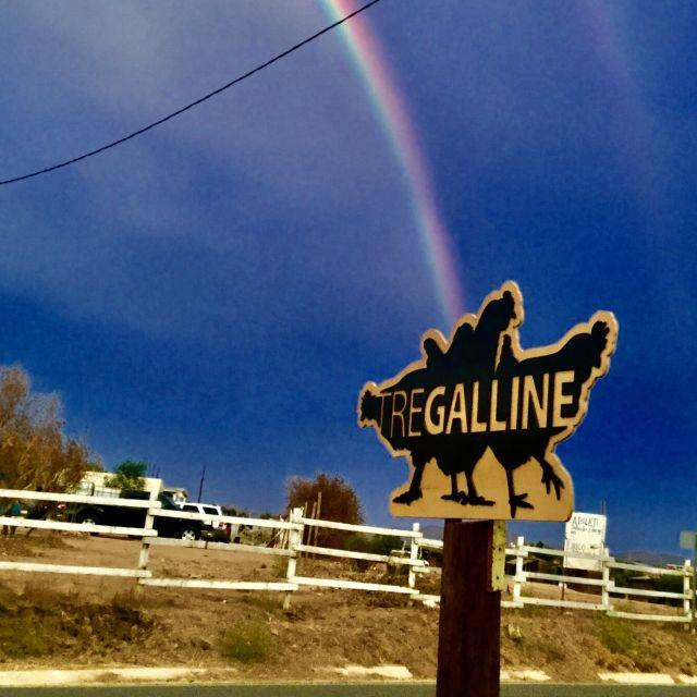 Tre Galline, Ensenada, BCN