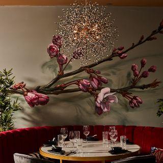 Blossom Dim Sum & Grill
