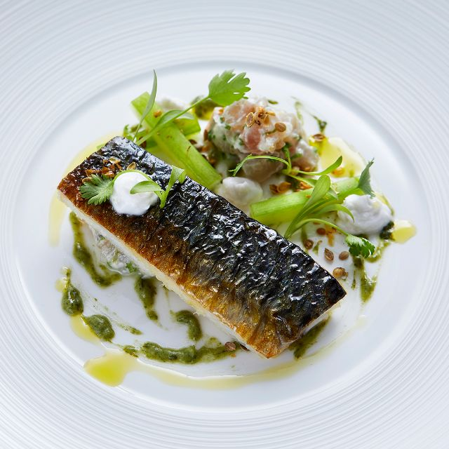 Brixham Mackeral - Indigo at One Aldwych, London