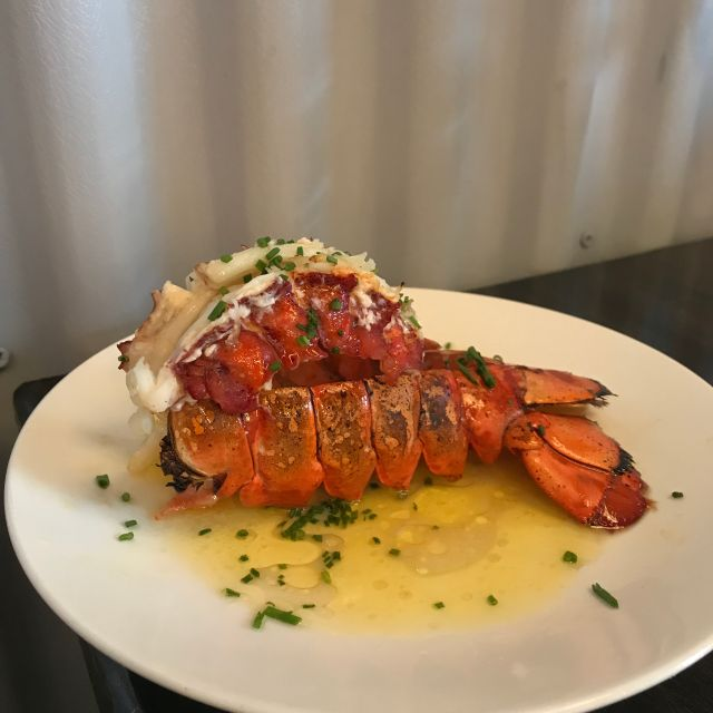 Adult lobster bib