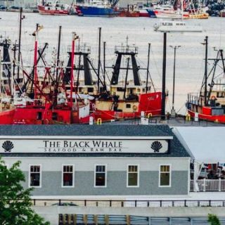 The Black Whaleの写真