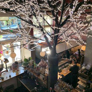 A photo of Moshi Moshi Sushi restaurant