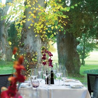 A photo of The Linden Tree at Carton House Hotel restaurant