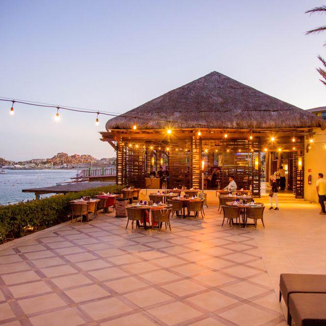 Tribes - El Rincón Culinario, Cabo San Lucas, BCS