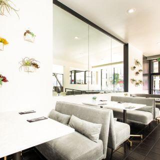 Osha Thai Noodle Cafe on Geary