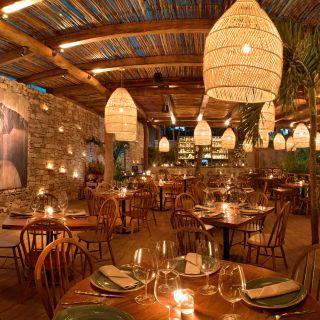 Best Restaurants In Tulum Opentable