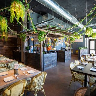 A photo of Chai Thai Noodles - Berkeley restaurant