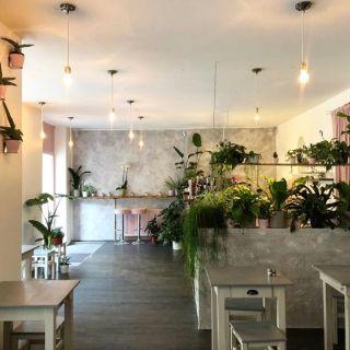A photo of Avocado Club restaurant