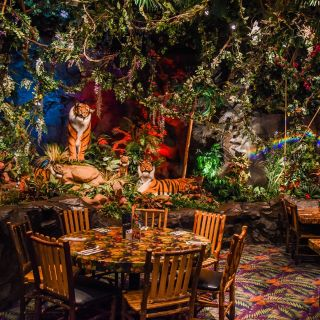 A photo of Rainforest Cafe - Grapevine Mills restaurant