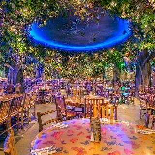 Rainforest Cafe - Menlo Park Mallの写真