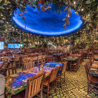 Rainforest Cafe - Detroit Great Lakes