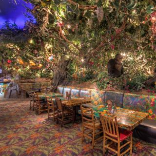 A photo of Rainforest Cafe - Sawgrass Mills restaurant