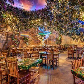 Rainforest Cafe - Galvestonの写真