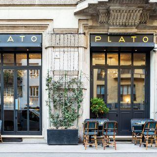 Plato Chic Superfood